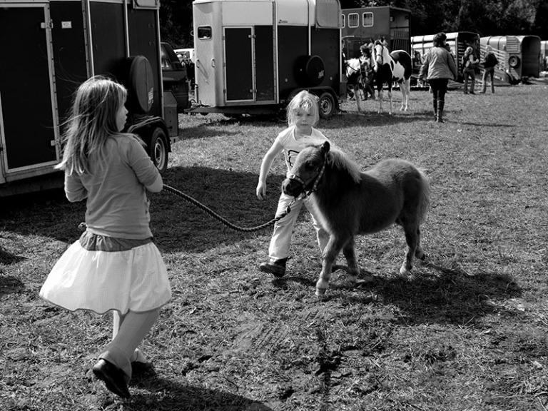 2009-09-horsesale-001a