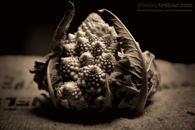c5d2_2012_food_romanesque_0001