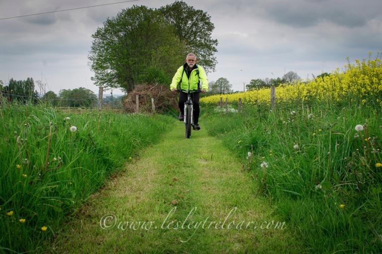 px_2013_france_norm_bike_greenlane_la-100-1