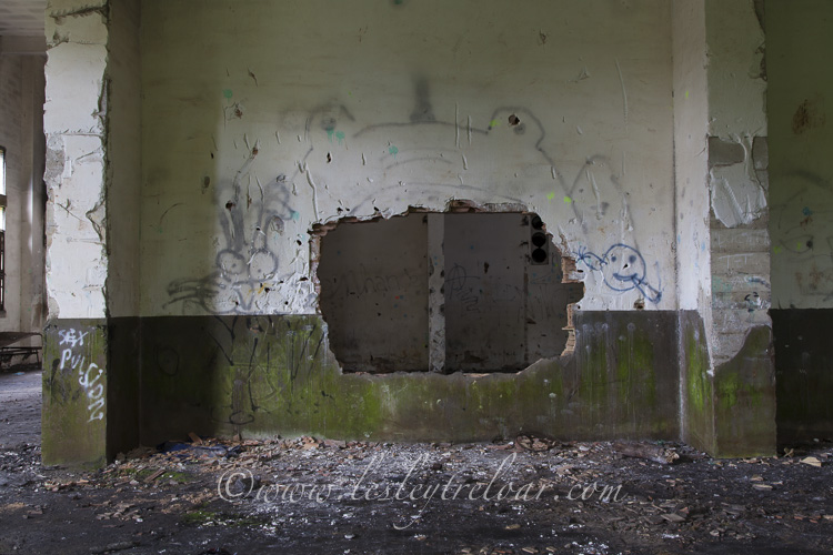 Photographer: Lesley Treloar (lesleytreloar.com)