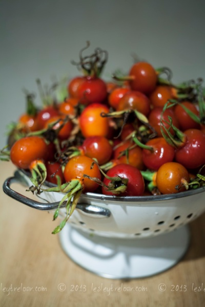 c5d2_2013_food_rosehipsyrup-1