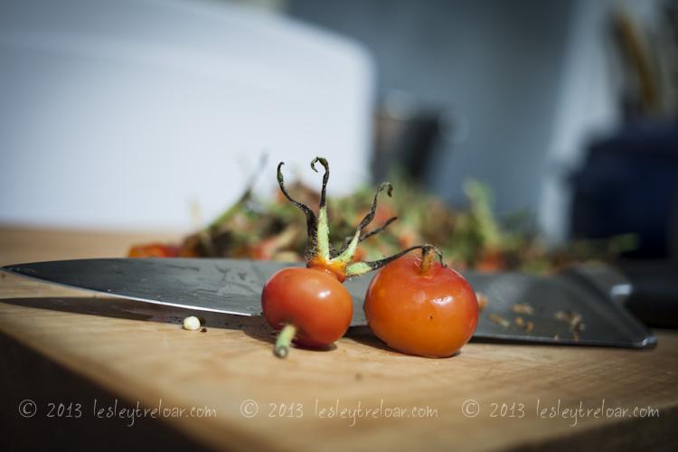 c5d2_2013_food_rosehipsyrup-4