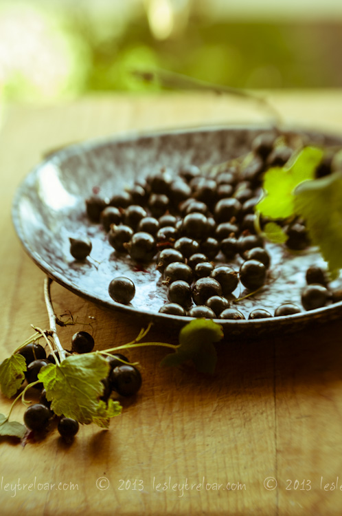 px_2013_food_blackcurrants_0032
