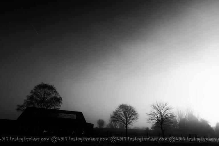 Freezing French Fog