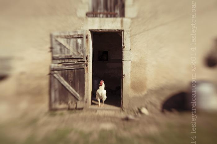 c5d2_2014_france_burg_saint-germain-en-brionnais-18-Edit