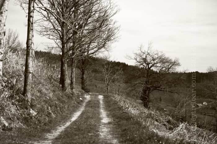 c5d2_2014_france_burg_st-racho_walk-104