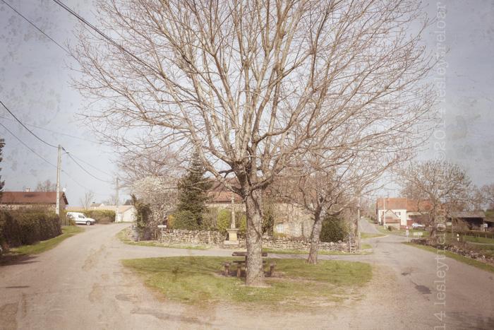 Saint Symphorien des Bois