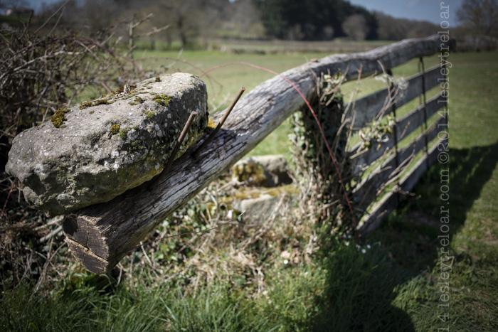 self-closing gate in Burgundy