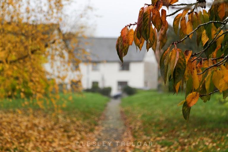 Presteigne, Powys, Welsh Marches, Wales.